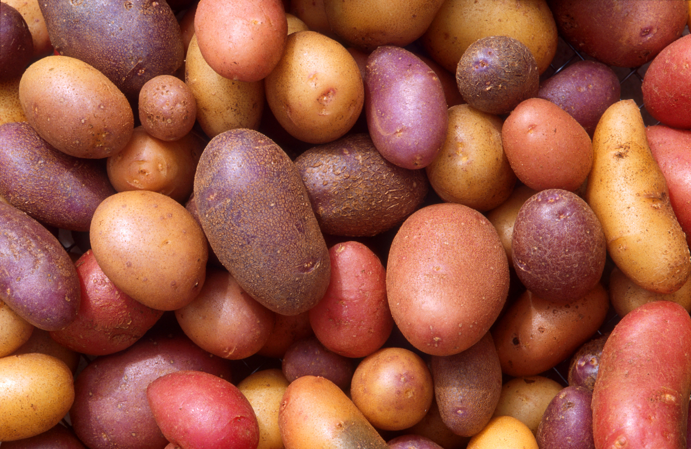 Six Cool Folk Remedy Uses for Potatoes