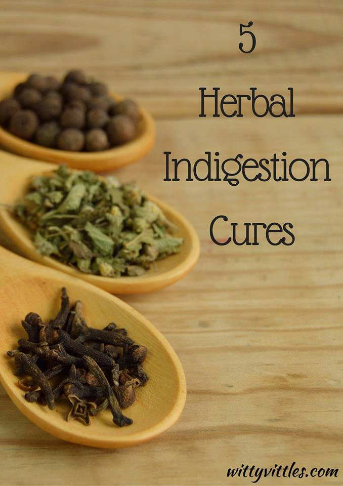 Five Herbal Indigestion Cures