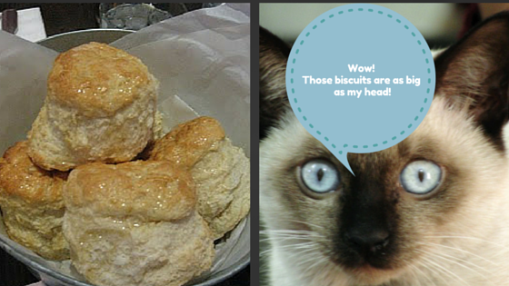 Cat Head Biscuits